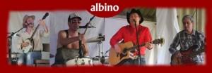 Albino_web2
